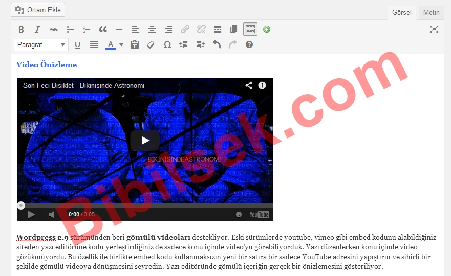 wordpress video gömme